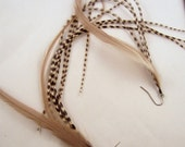 Super Long Feather Earrings taupe with grizzly
