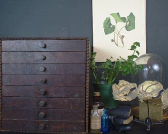 Antique 8 Drawer Wooden Cabinet