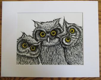 3 Owls Pen & Ink Print Matted 11x14 by Kelly Green H-Baum Owl Art