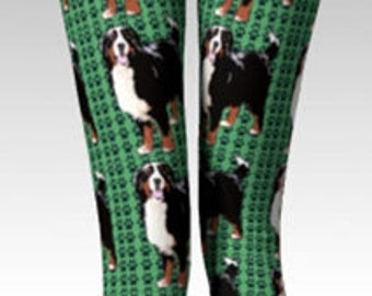 Bernese Mountain Dog Leggings in Green