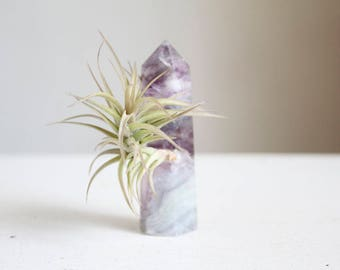 Gift For Mom, Fluorite Wand Air Planter, Airplant Crystal Garden, Purple and Green Fluorite Wand, Boho Gift For Friend, Sister