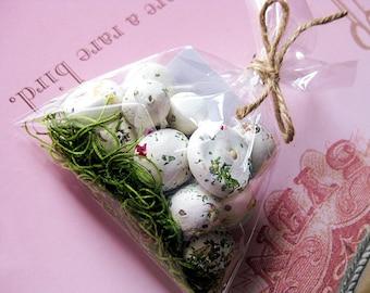 Herb Seed Bombs, 20 Basil and Cilantro HERB Seed Balls, Garden Gift, DIY Favors, Herb Gardening, Botanical Seed Bombs ™