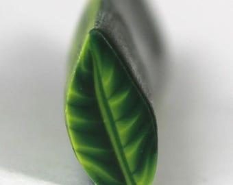 Raw Unbaked Polymer Clay Leaf Cane