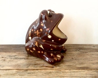 Frog Sponge holder Brown Speckled scubbie big mouth frog