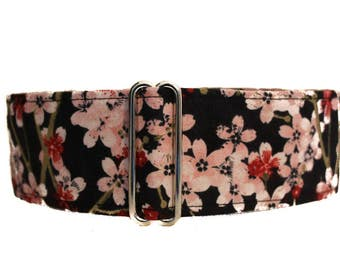 Cherry Blossom Martingale Collar, 2 inch Martingale Collar, Windhunde, Cherry Blossom Dog Collar, Custom Dog Collars, Wide Dog Collar