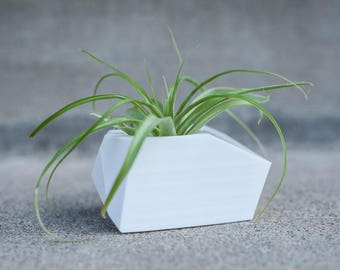 Ellie - Air Plant/ Mini Succulent Planter