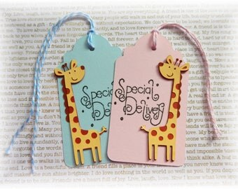 Baby Tags - Giraffe Tags - Special Delivery - Gift/Hang tags (10)
