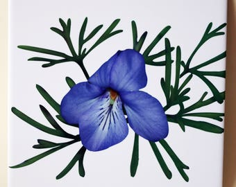 Ceramic tile, ONE Bird's-foot violet decorative wall tile | spring wildflower, Birdsfoot Violet floral tile, blue, purple flower