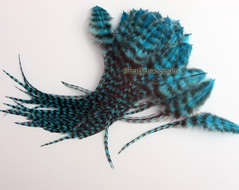 """Turquoise Grizzly Craft Feathers Wholesale Rooster Feathers Grizzly Pattern Bulk Craft Feathers / 50 Bulk Grizzly Feathers / 3-7"""""""