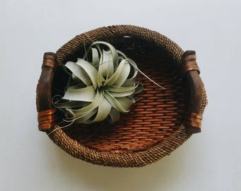 Wood Sisal and Basket - Decorative Wicker Basket with Handles - Bohemian Boho Decor