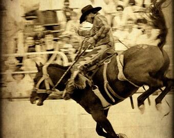Rodeo Cowboy Fine Art Photography Western Horse Texas Photographs