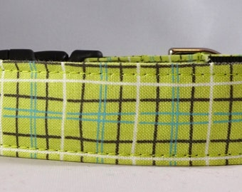 Dog Collar, Martingale Collar, Cat Collar - All Sizes- Lunchbox in Green