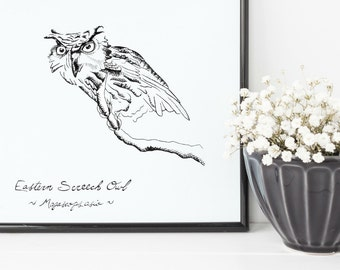 "Screech Owl Print | 8"" x 10"" Illustration 