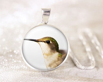 Female Hummingbird Sterling Silver Necklace - Silver Bird Jewelry, Sterling Silver Hummingbird Jewelry, Hummingbird Photo Pendant, Bird Gift