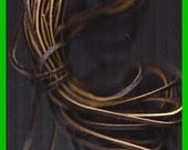 LEATHER LACES Lacing Chocolate Brown 5 Foot Long 1/8 inch 68 inch Length