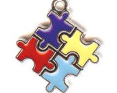 AUTISM AWARENESS Charm. Silver Plated Enamel. One Sided Jigsaw Puzzle Piece.