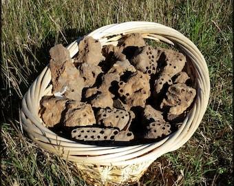 Dirt Dauber/ Mud Dauber Nest - Ground 5 ounces