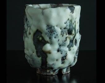 Shino Cup Jever