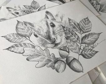 Squirrel, Acorn & Leaves Pencil Drawing Print