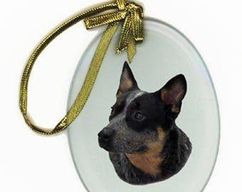 AUSTRALIAN CATTLE DOG Merle Oval Beveled Glass Suncatcher  Ornament dog
