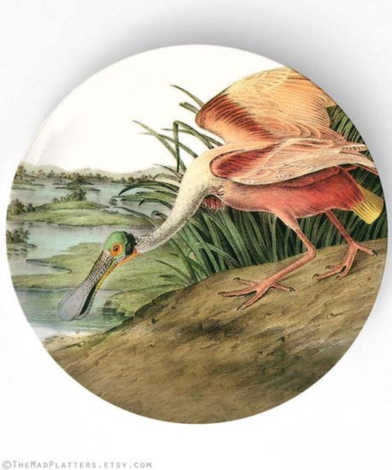 Audubon Spoonbill bird melamine dinnerware