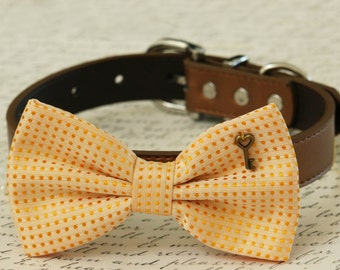 Cream dog bow tie collar, Pet accessory, Polka dots, Heart Key, Country Rustic wedding