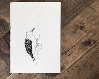 Original Custom Ink Illustration of a Bird - Drawing - Gift - Birds