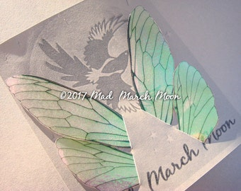 Fairy wing set, iridescent wings with upper and lower pairs Cicada Style for crafting