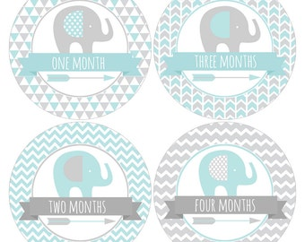 Set of 12 Round Monthly Stickers with Elephants and Arrows in Blue and Gray for Baby Boys Photo Props Keepsakes - CDBSMos003
