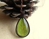 Real Aspen Pressed Leaf Tear Drop Glass Woodland Copper Pendant Necklace