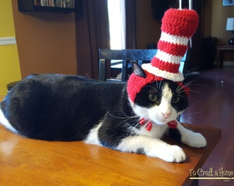 Cat In The Hat Cat Hat