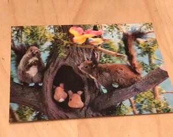 960's lenticular 3d SQURELL scene post card