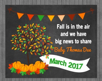 FLASH SALE Fall Pregnancy Announcement