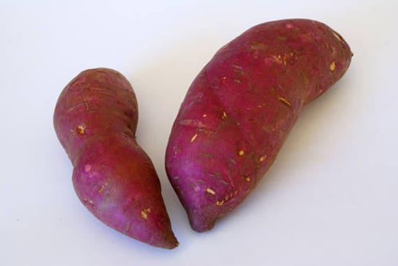 how to choose japanese sweet potato