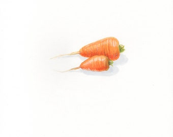 Day 14 #NOMvember Gouache Painting: Carrots Vegetable Food Illustration