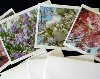 FLORAL Note Cards created by Pam of Pam's Fab Photos: This is a handcrafted 4-piece set featuring photos of blossoming spring trees