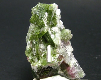 "Bicolor Watermelon Tourmaline Crystal  from Brazil - 1.4"" - 50 Carats"