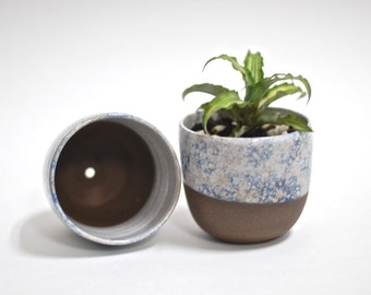 Succulent Planters - Handmade Ceramic Planters - Handmade Pottery - Flower Pot - Brooklyn Sidewalks Collection - Rustic planters