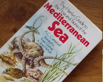 Hamlyn Guide to the Fauna and Flora of the Mediterranean sea/Vintage Book/Natural History/Book Plates/Decoupage