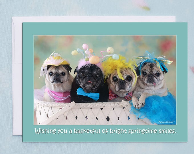 Funny Easter Card - Pug Card- Basketful Of Smiles 5x7
