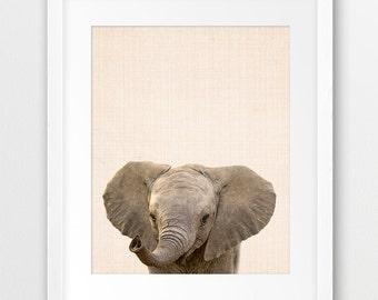 Elephant Print, Baby Elephant Photo, Nursery Animal Wall Art, Safari Animal Decor, Baby Nursery Animal Print, Kids Room Decor, Printable Art