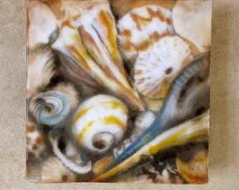 Encaustic painting - Sea shells, mixed media, encaustic art
