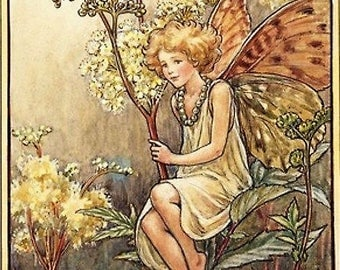 Queen of the Meadow - Counted cross stitch pattern in PDF format