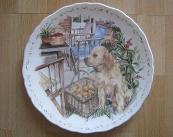 Royal Albert Man's Best Friend Collection Plate