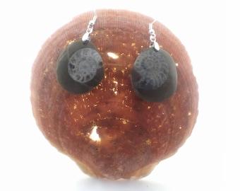Ammonite Earrings, Fossil Jewelry, Fossil Earrings, Brown Earrings, Sterling Earrings Stone Earrings Sterling Drop Earrings Ammonite Jewelry