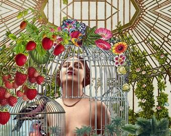 Limited edition digital print - My Secret Garden