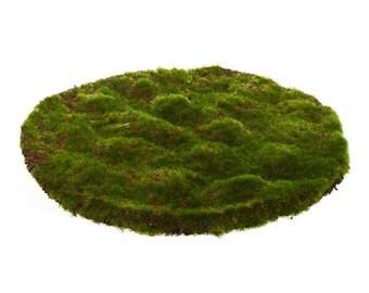 Moss Mat Artificial Grass Round Flat Fake Synthetic Grass 30cm x 30cm long