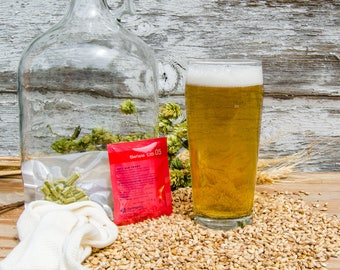 American Pale Ale Do It Yourself 1-gallon All Grain Recipe Kit