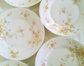 Vintage Limoges Plates, Set of 6
