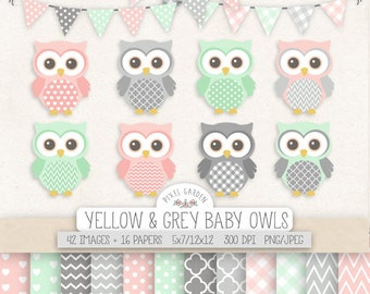 Baby Owl Clipart. Pink, Mint, Gray Nursery, Baby Shower Clipart. Pastel Digital Paper in Chevron, Polka Dot, Gingham. Pink Mint Owl, Banner